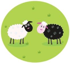 Black sheep white sheep kids