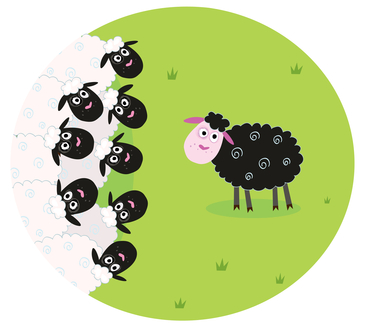 Black Sheep facing crowd of white