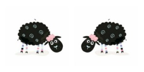 Mirror Sheep
