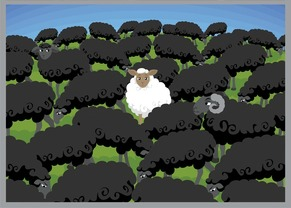 white sheep amongst black
